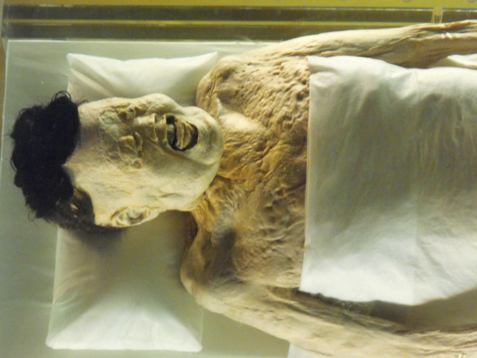 由文字上的丞相可辨出此墓是西汉长沙国夫人利苍文物辛追墓.电视剧《聂荣臻》主题曲图片