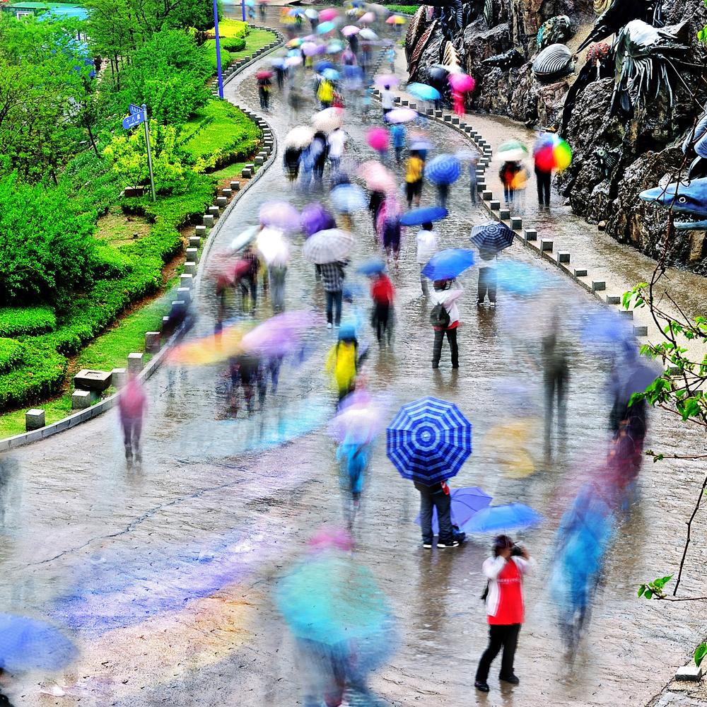 《雨中的风景》   2013年5月18日,第11届大连国际徒步大会在蒙蒙细雨
