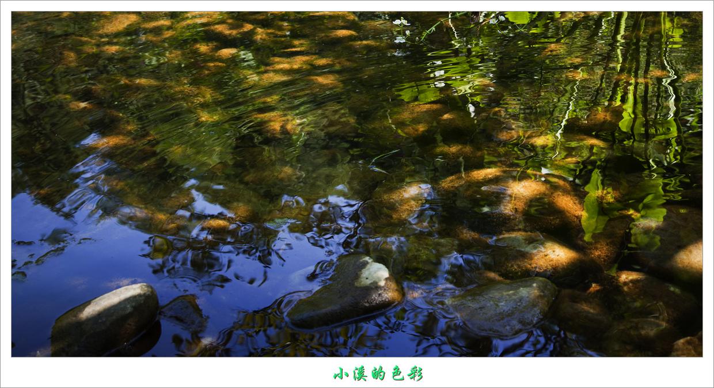秋天的小溪-树荫下,山涧流水汇成小溪-原创摄影-摄影