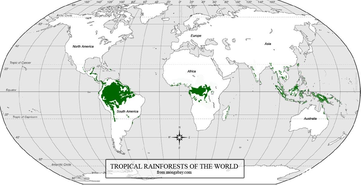 world-rainforest-map热带雨林分布.jpg