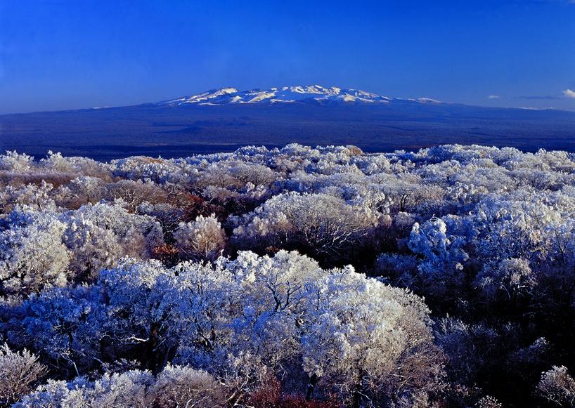 冬季长白山,魔界,雪乡,雾凇岛