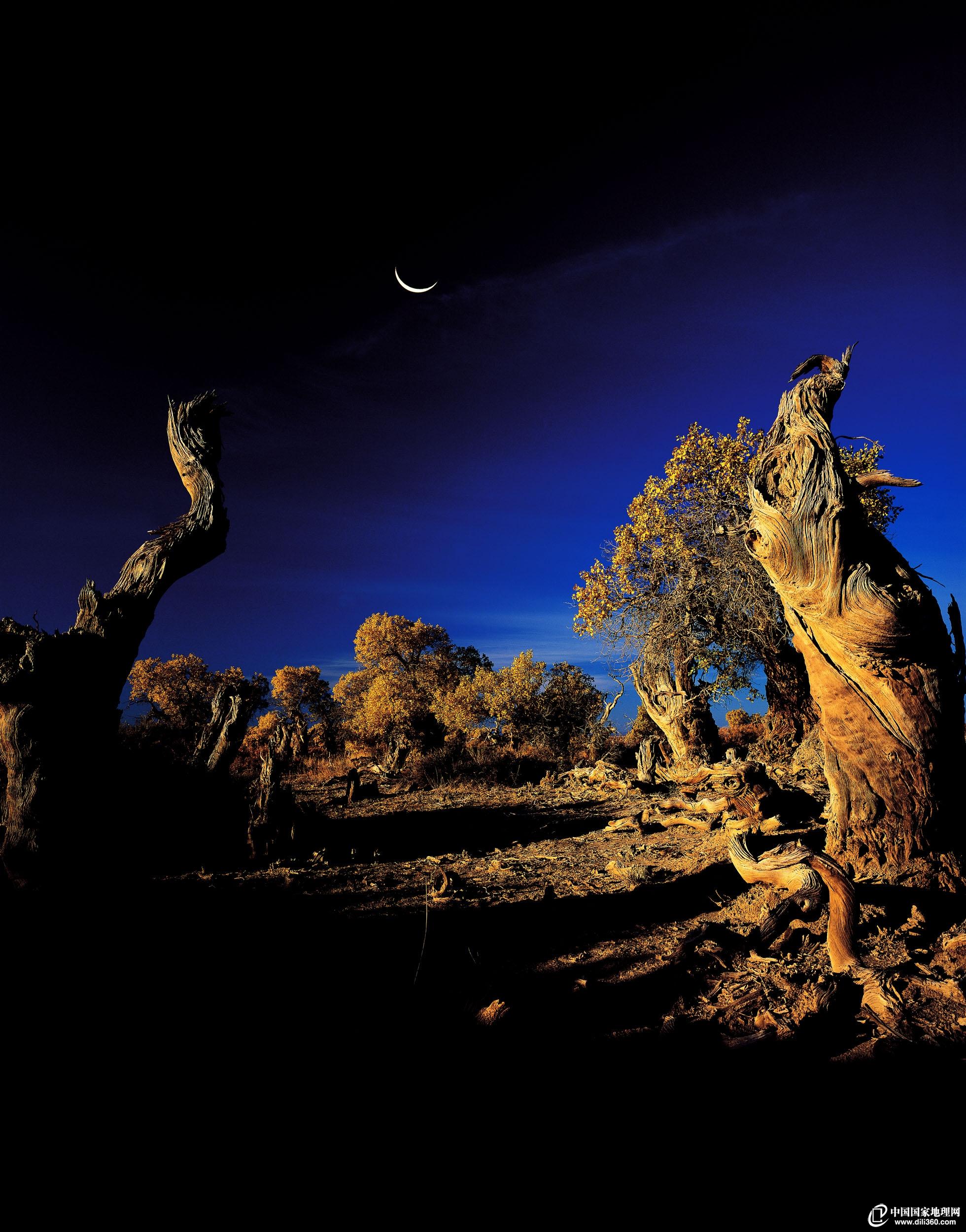 新疆星星月亮图片