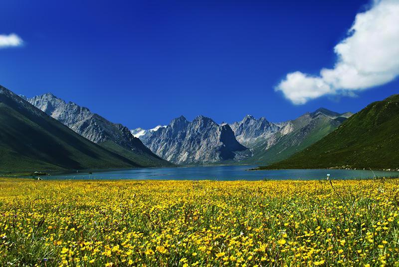 果洛藏族自治州地处青藏高原腹地,黄河源头,位于青海省的东南部.