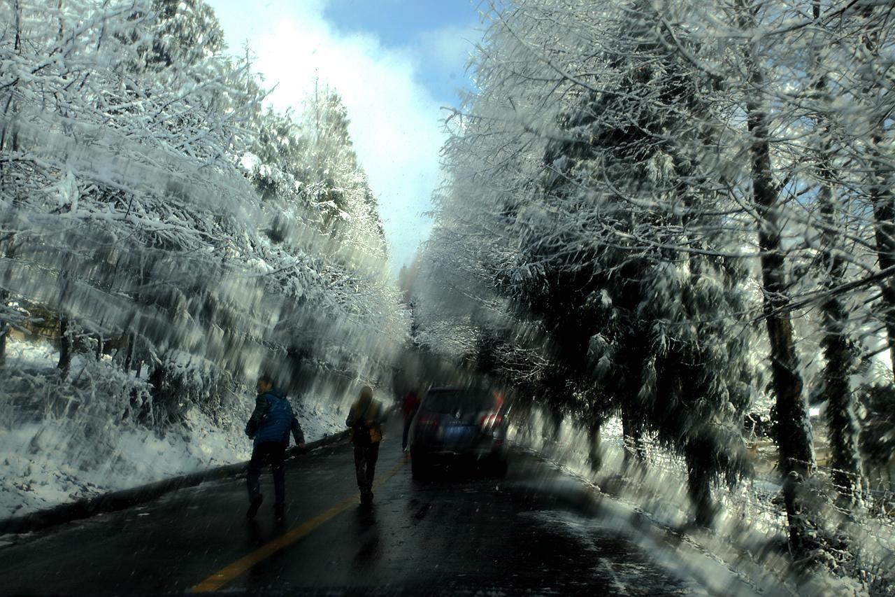 重庆南川山王坪赏雪-山王坪是金佛山风景区的重要