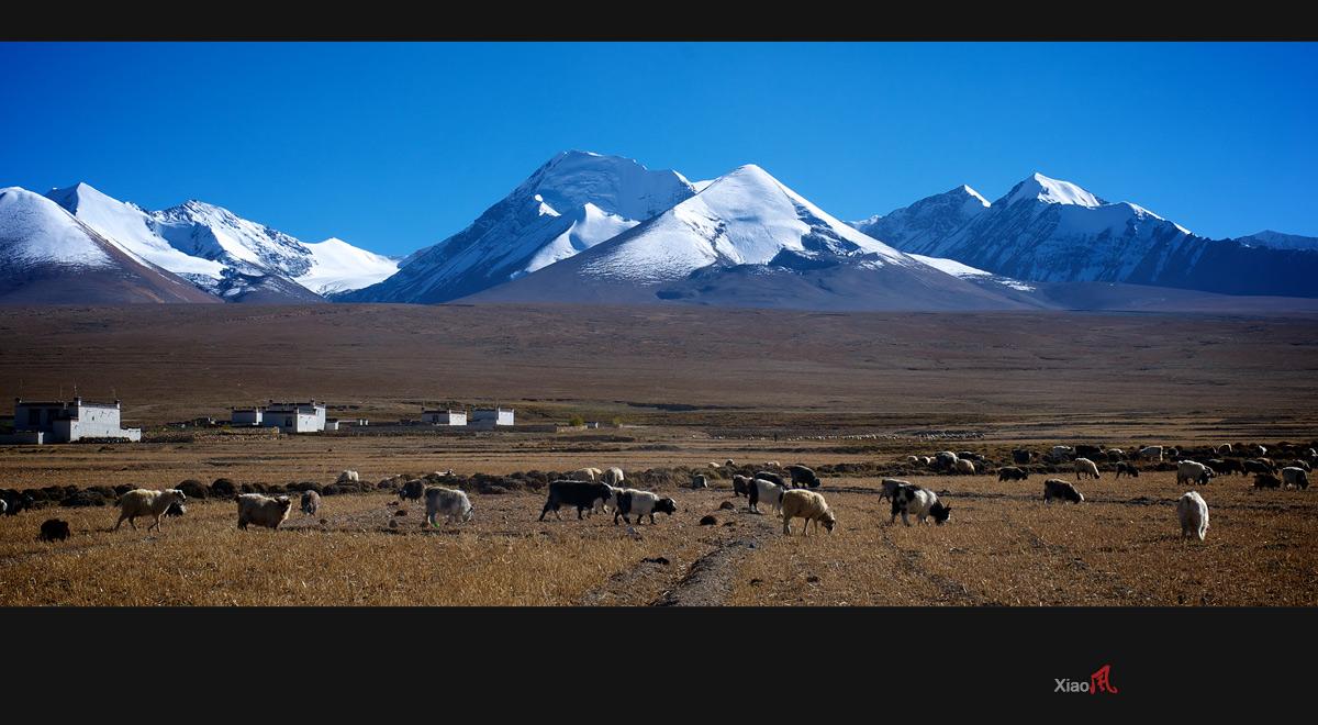 【西藏.从定结前往岗巴县的路上,经过一个美丽的村子.】