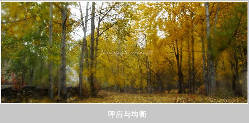 摄影特性:构图 - H哥 - H哥的博客